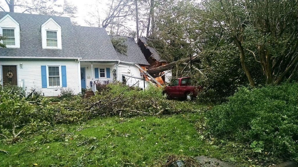 Hurricane property damage tree on house; questions to ask a public adjuster