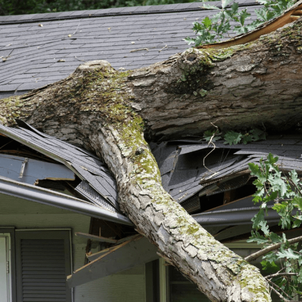 Home Insurance for damage